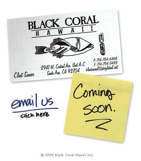 The Black Coral Hawaii website is coming soon. Click here to contact us.